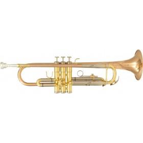 SML PARIS TP600 Trompette d'Etude Sib