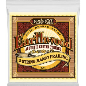 ERNIE BALL EARTHWOOD BANJO 5 CORDES A BOUCLE