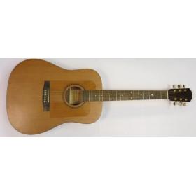 LOCATION Guitare Electro-Acoustique STRUNAL D777M